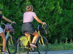 Manejar bicileta